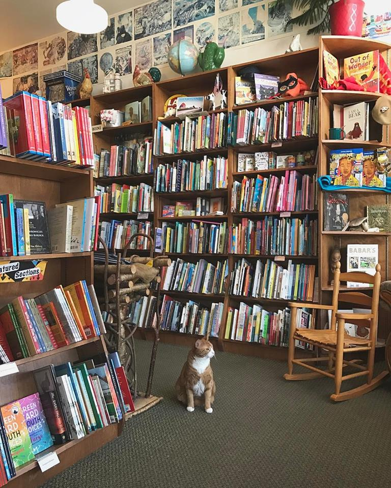 Wild-Rumpus-Books-Zappenin-Minneapolis-Minnesota